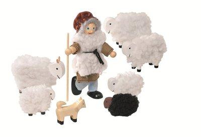 Goki - Herder met zijn schapen en hond